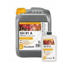 SH 81